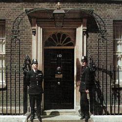 Iconic Doors