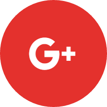 Leader Google+ Icon