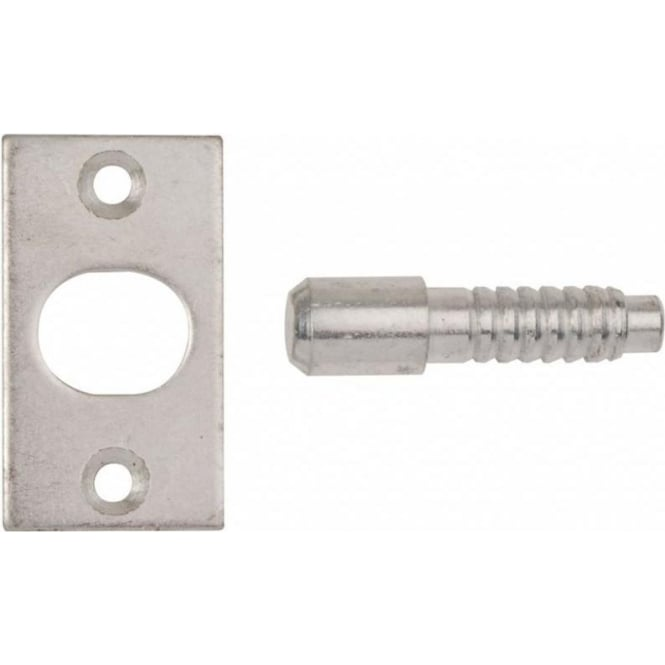 Dale Hardware Bright Zinc Plated Hinge Bolts (Pair)